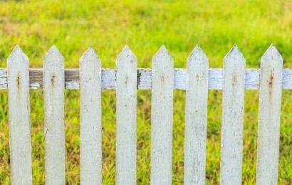 Clôture de jardin, quel budget pour clôturer son jardin ?